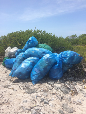 Beach clean up bags_300