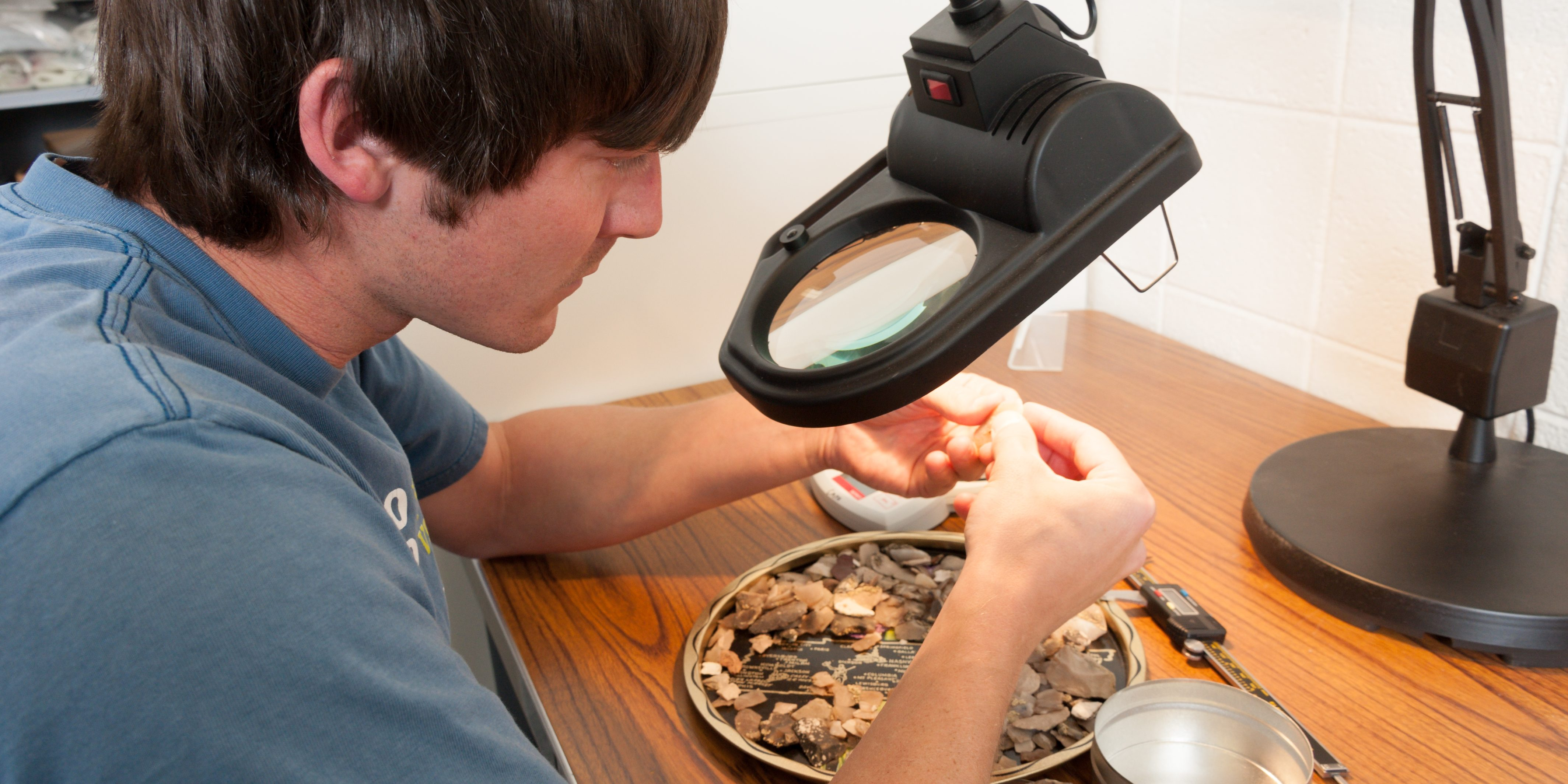 A student looks at specimens in the Benedict Alpine Laboritory.