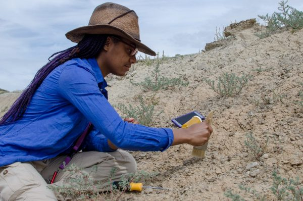 Student using brush in the dirt during Paleontology Field School