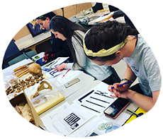Students working in the Human Osteology Lab