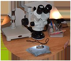 Primate Origins Lab microscope
